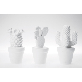 Deco Cactus White Assorted